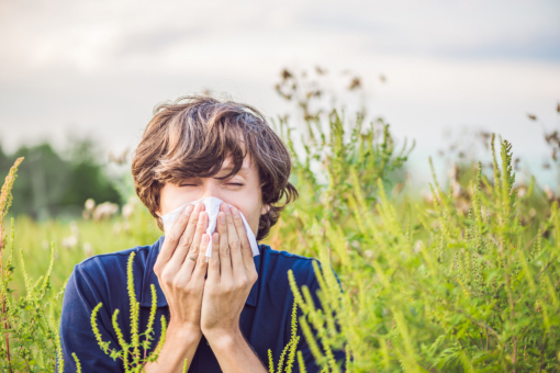 The Dreaded Hay Fever Season Is Here!